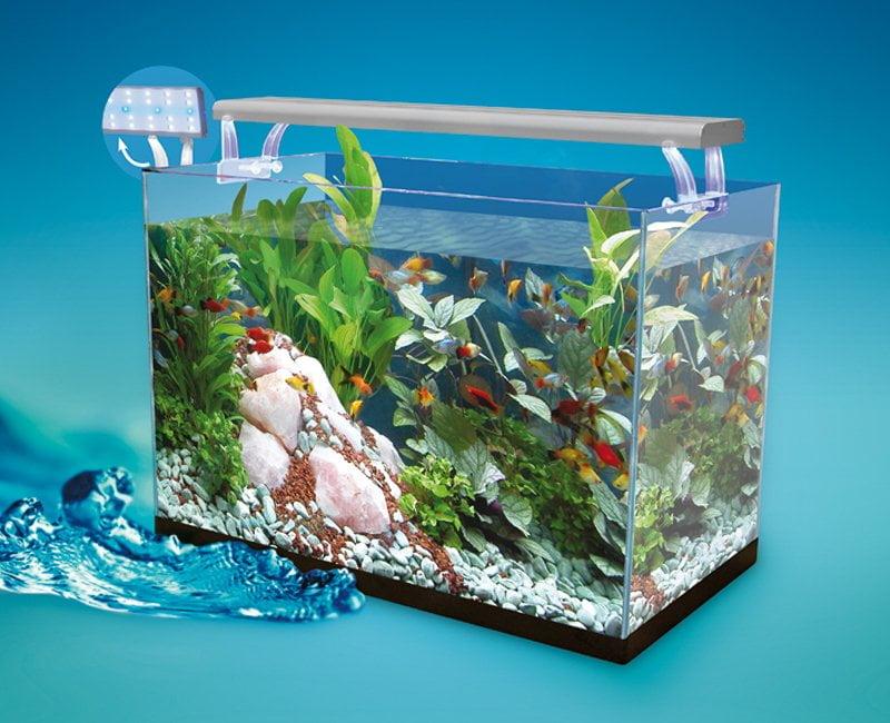 Nuevos acuarios AquaLed Garden