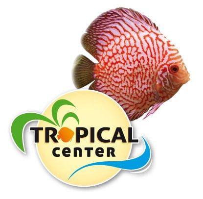 Discos Tropical Center