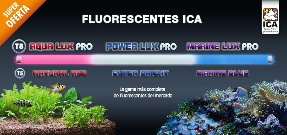 Expositor de Fluorescentes ICA