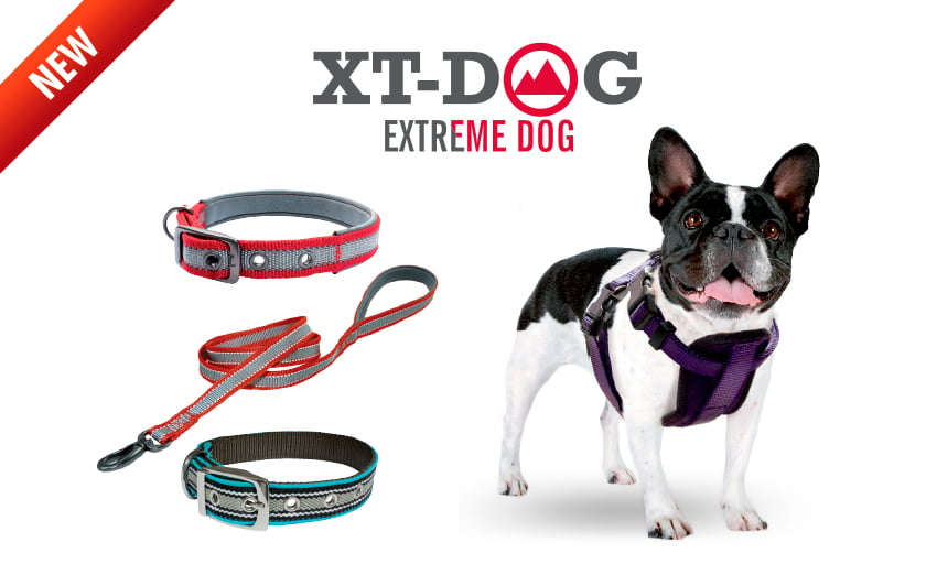 Nuevas correas, collares y arneses XT-DOG