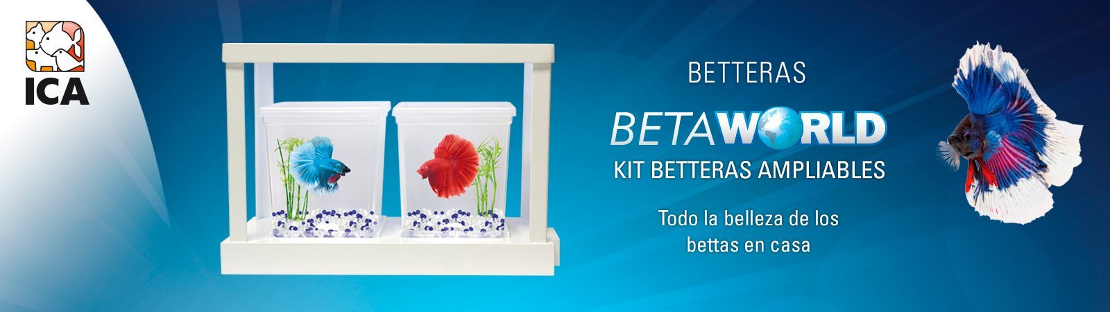 BetaWorld KIT