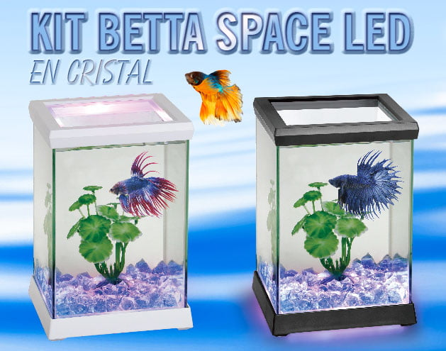 KIT BETTA SPACE LED
