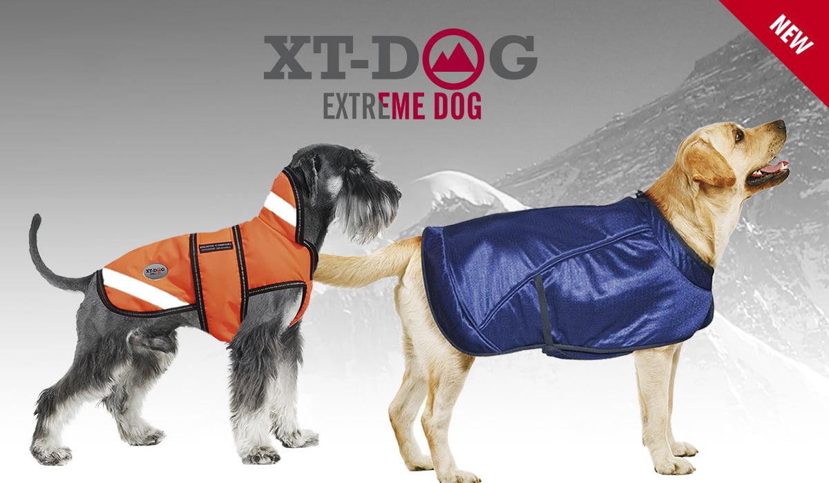 xt_dog_fitness