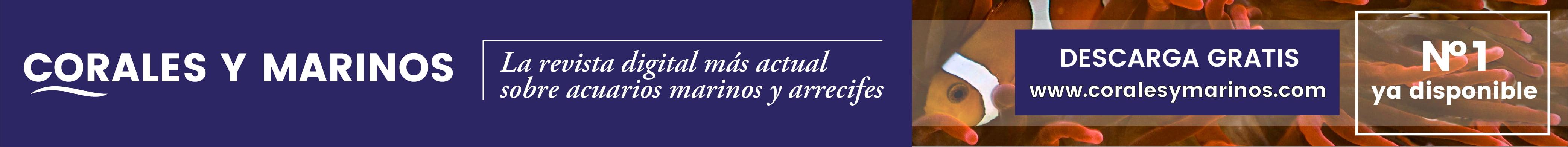 Revista Corales Y Marinos