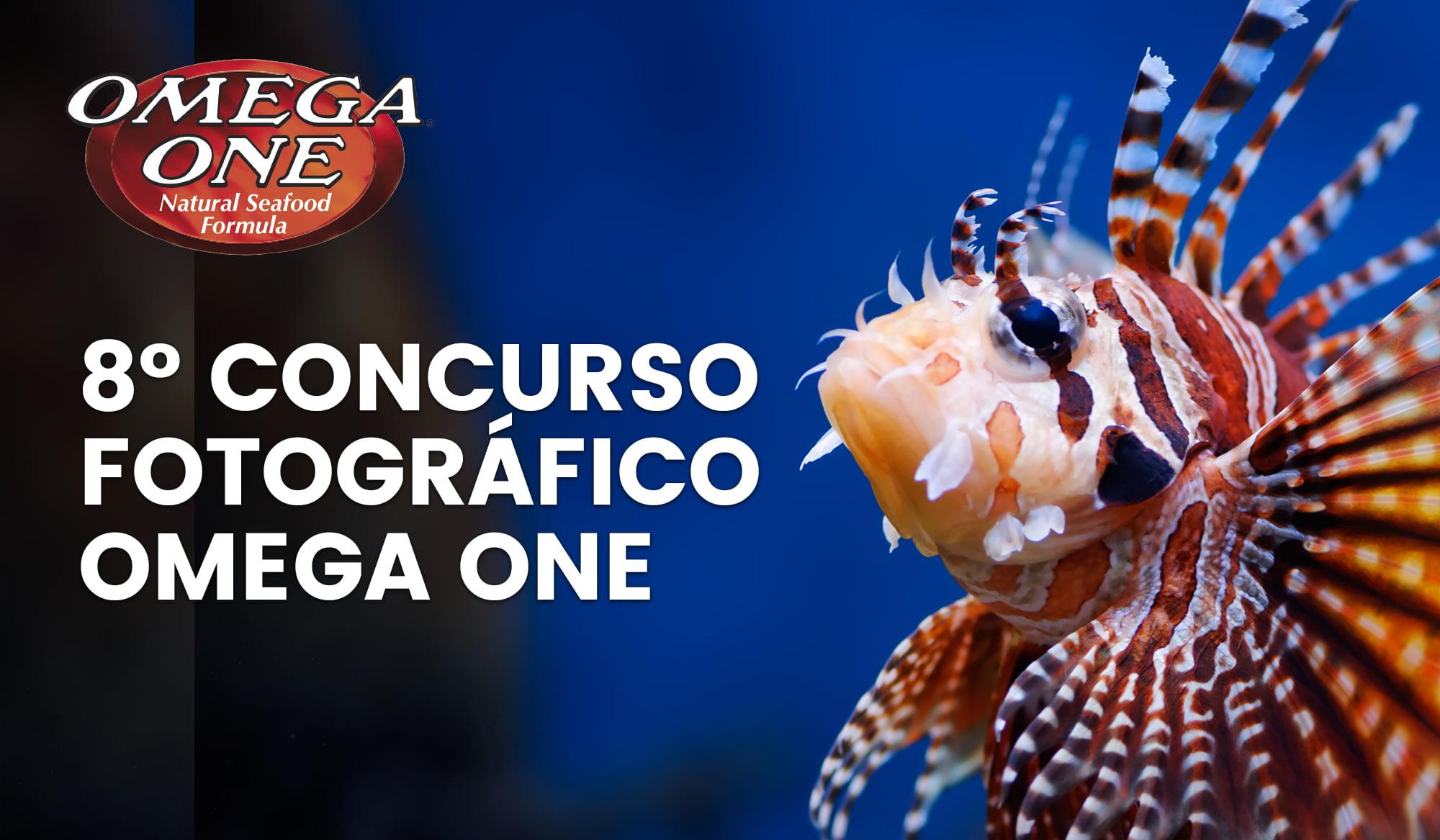 8º Concurso Fotográfico Omega One