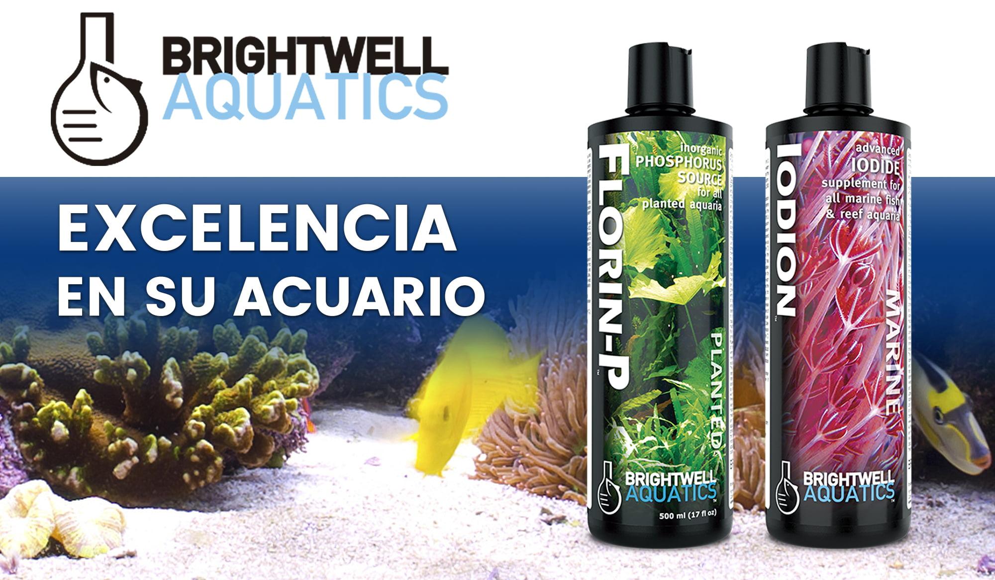 Brightwell Aquatics, calidad superior para acuarios
