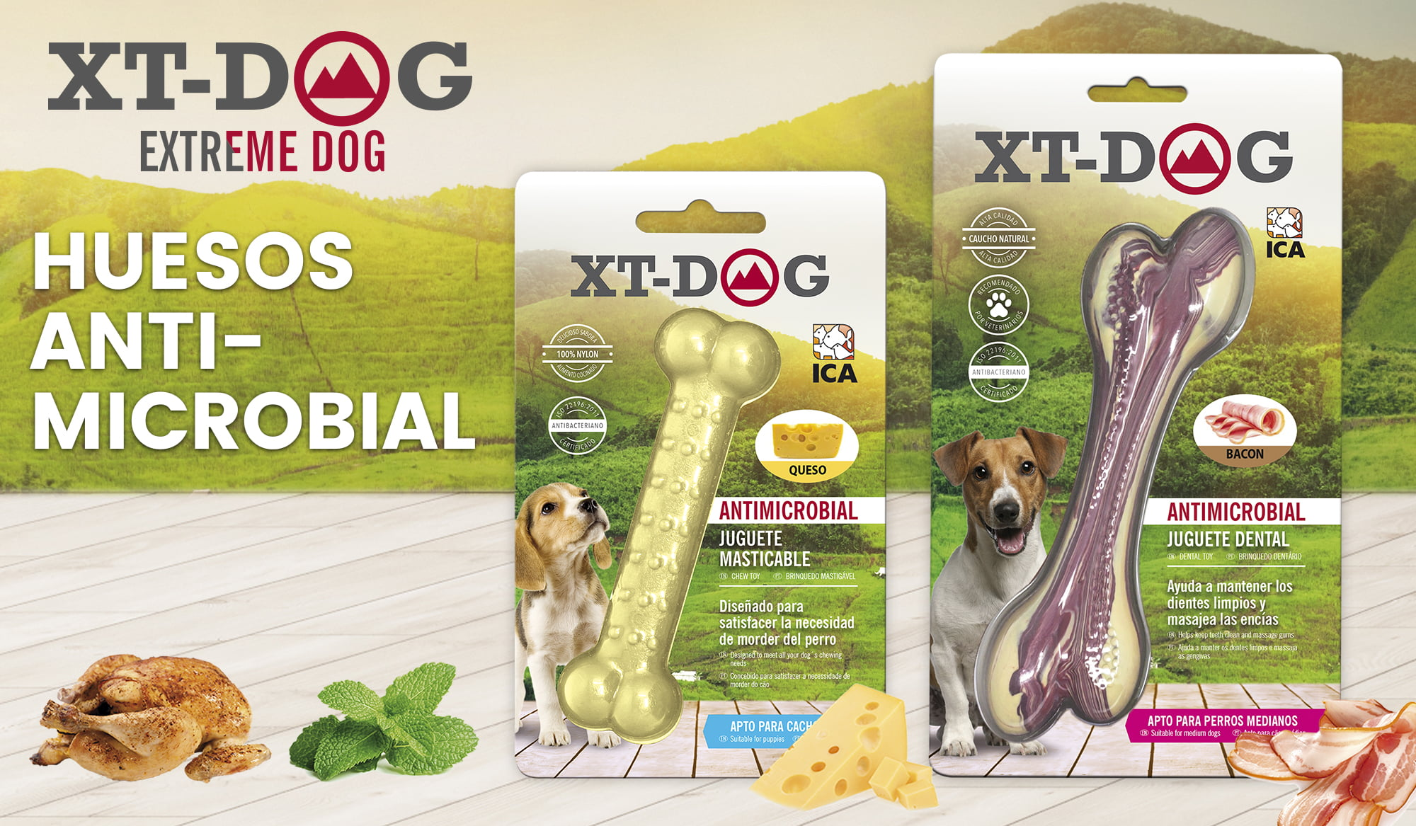 Juguetes dentales antimicrobianos XT-Dog