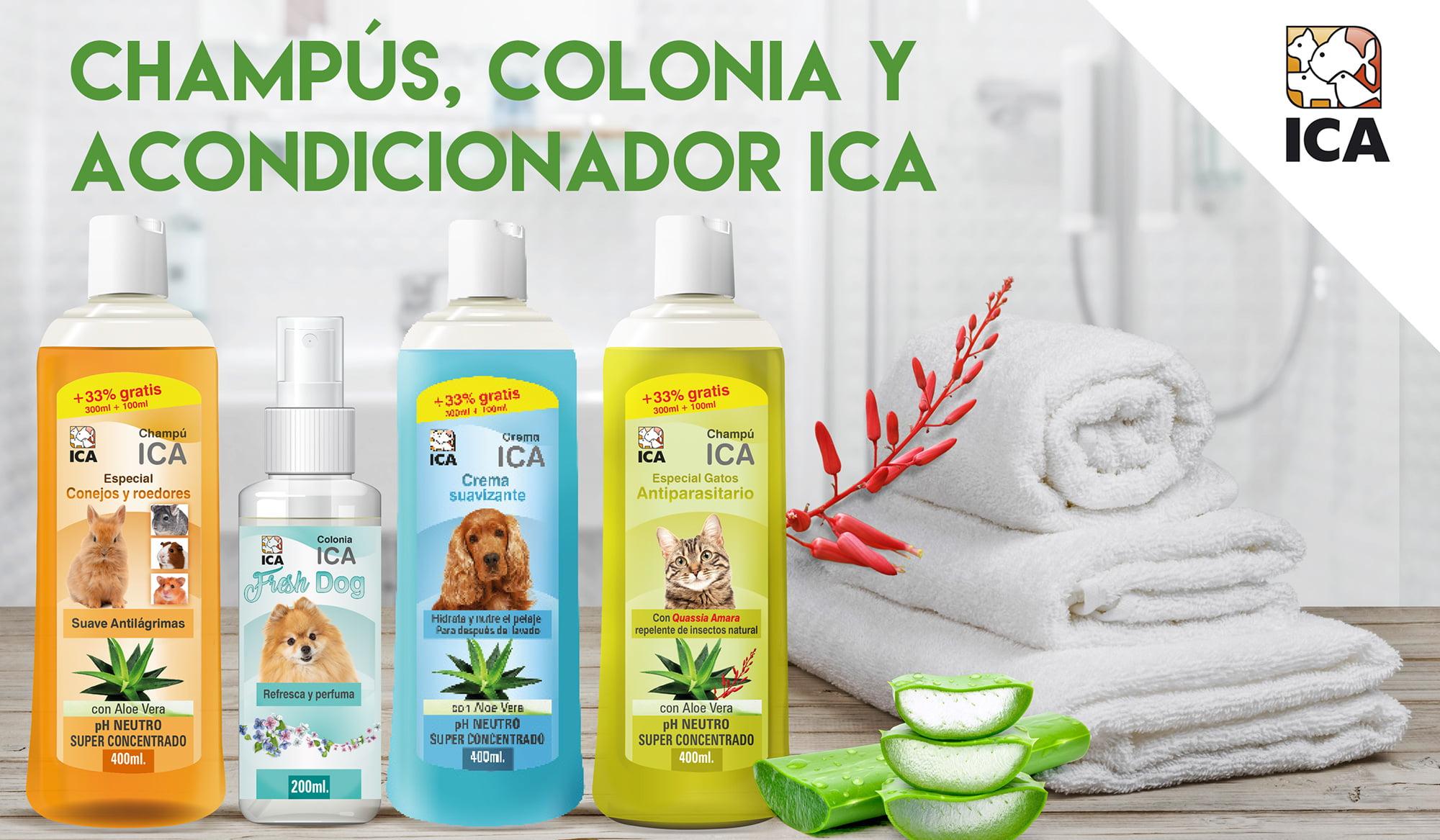 Champús, acondicionador y colonia ICA